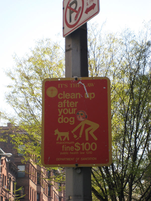 clean up after your dog fine